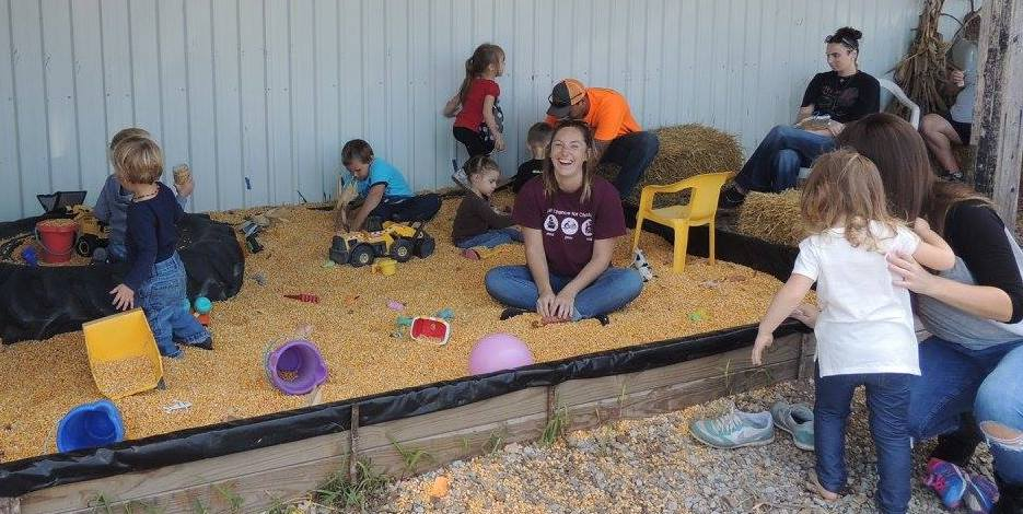 people playing in corn pit
